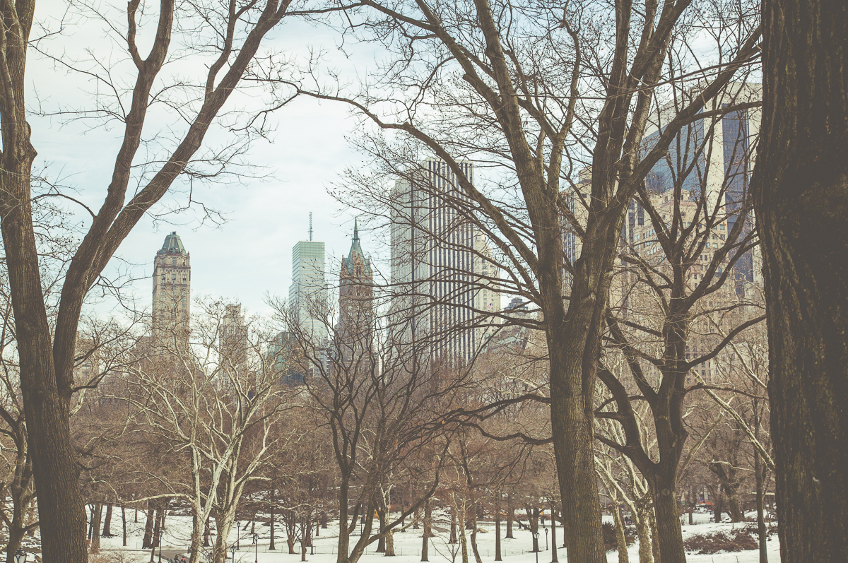 New York City Central Park Snow Neil Jackson Yorkshire Photographer