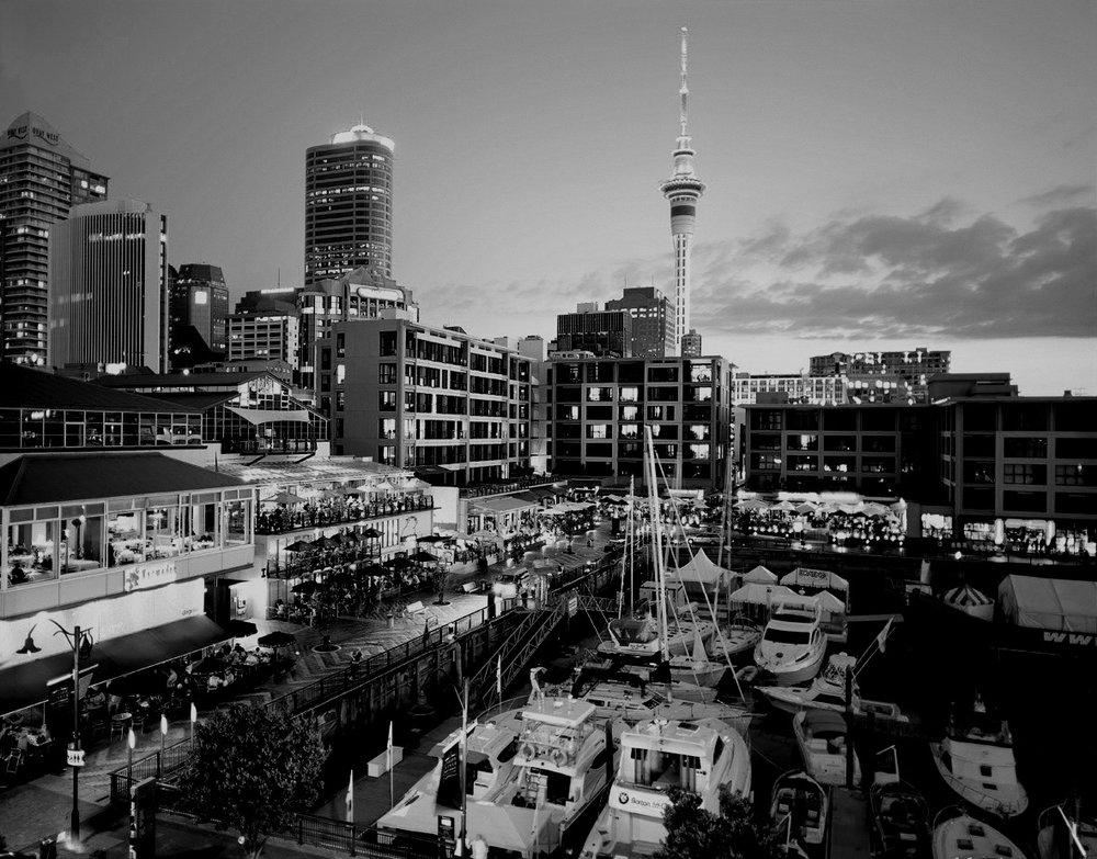 Auckland1.jpg