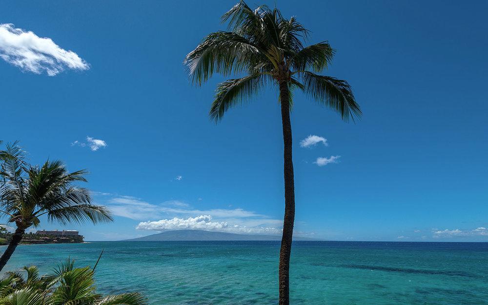 Vacation-Rentals-Maui-Honokowai-Hale-Ono-Loa-11.jpg