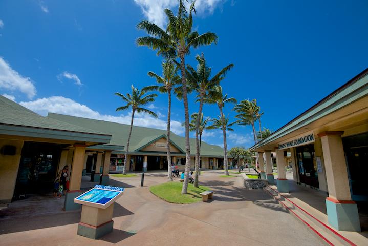 Maalaea-Banyans-Condo-Rentals-Maui-P17.jpg