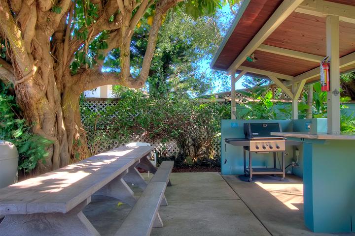 Napili-Bay-Resort-Condos-Maui-P10-Grills.jpg