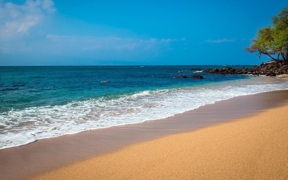 Napili-Gardens-Maui-Condo-Rentals-P4-Beach.jpg