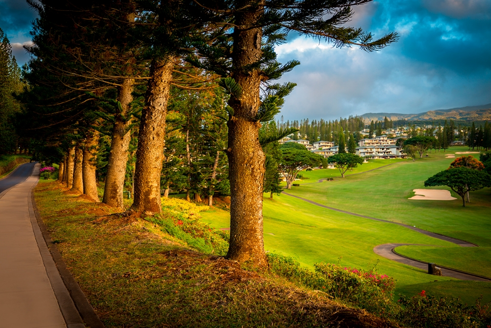 Kapalua-Villas-Maui-Golf-Condo-Rentals.jpg