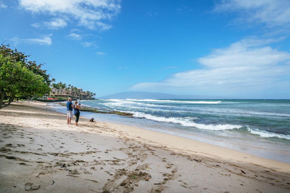 .3 Miles away, Honokawaii Beach Park offers a great beach and gentle surf!