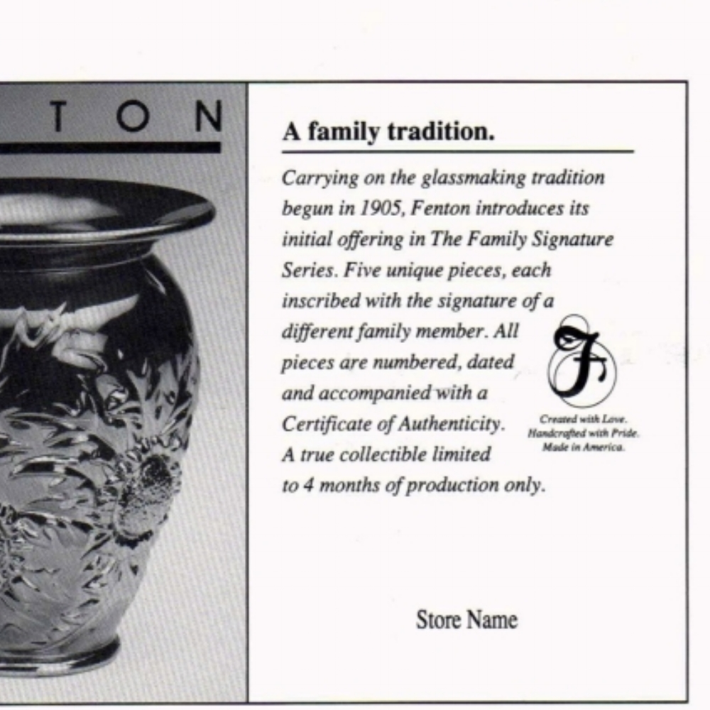1993 Family Signature Flyer