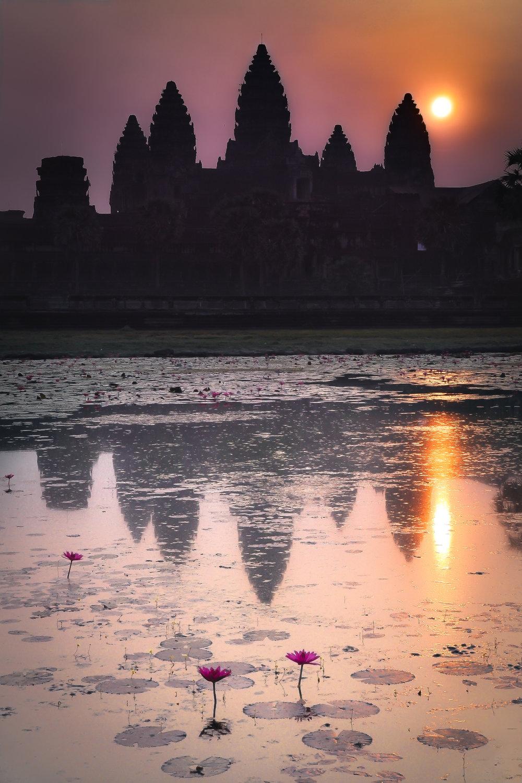 Lotus Sunrise - Angkor Wat (Cambodia)