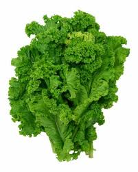 1 CUP OF MUSTARD GREENS:  VIT A - 118%     VIT C - 65%  IRON - 5%      CALCIUM - 6%