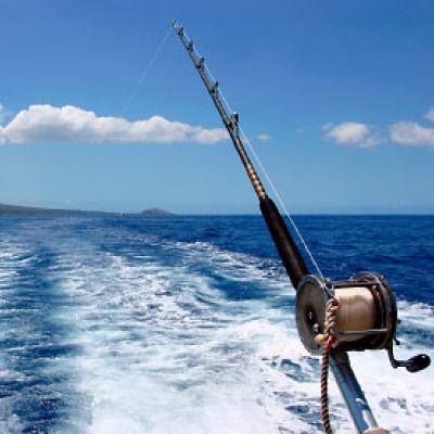 live-fishing.jpg