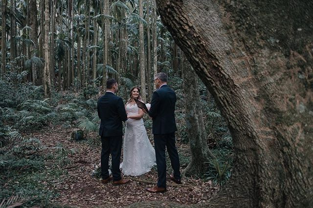 Maybe not every star is meant to be seen by the world. Maybe some stars are only supposed to be seen by their soulmates. -j. iron word  WILDHEARTED & HITCHED  Boutique Elopement Specialists