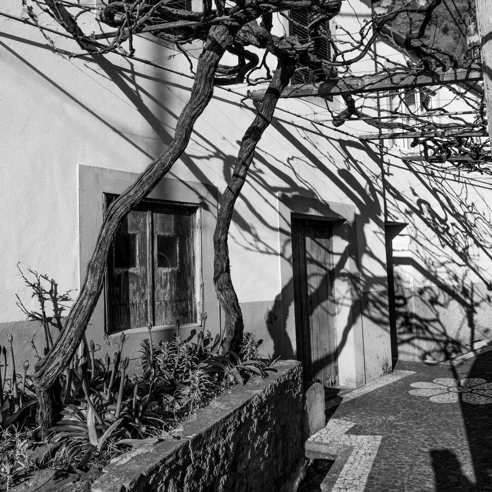 jardim-3.jpg