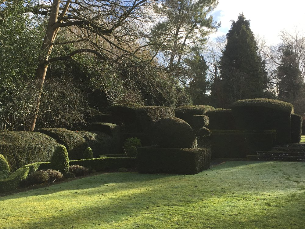 Reel Hall, Surrey Gardens Trust, Garden Events, Gardening Lectures, Gardening News, Gardens in Schools, Surrey Events, Sussex Events, Garden Membership.JPG