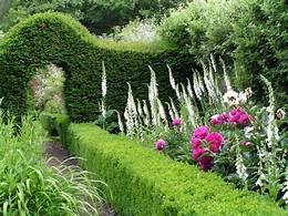 Sandleford Place, Surrey Gardens Trust, historic gardens, NGS gardens, garden visits, Berkshire Gardens.jpeg