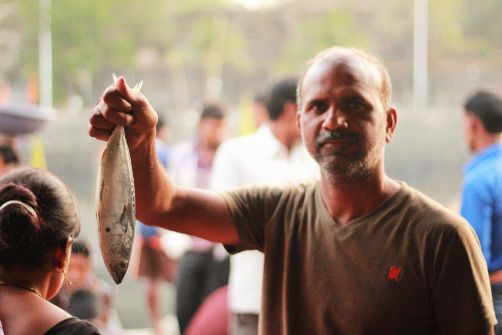 Every day a fish auction takes place in the market, but it is open only to wholesale buyers. However, if you know what to look for, the docks are a great place to buy fresh catch at cheaper prices than other markets: Tips to remember while choosing fish are clear, glossy eyes, shiny red gills, and flesh that is firm and blemish-free.