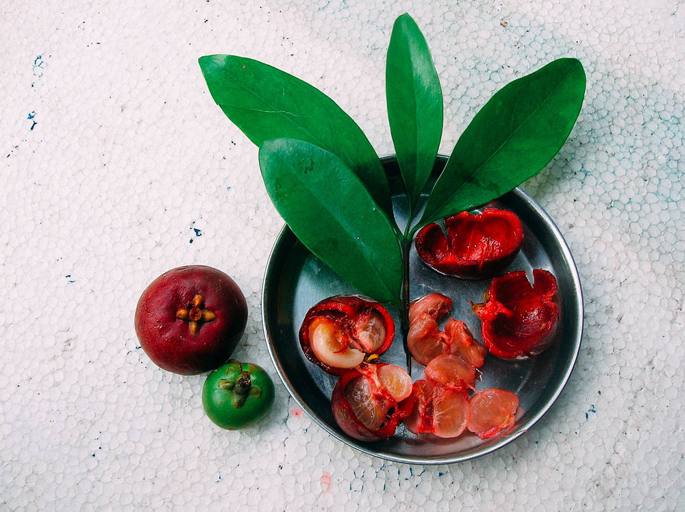 The concentrated extract of kokum is used in the preparation of sol kadi.