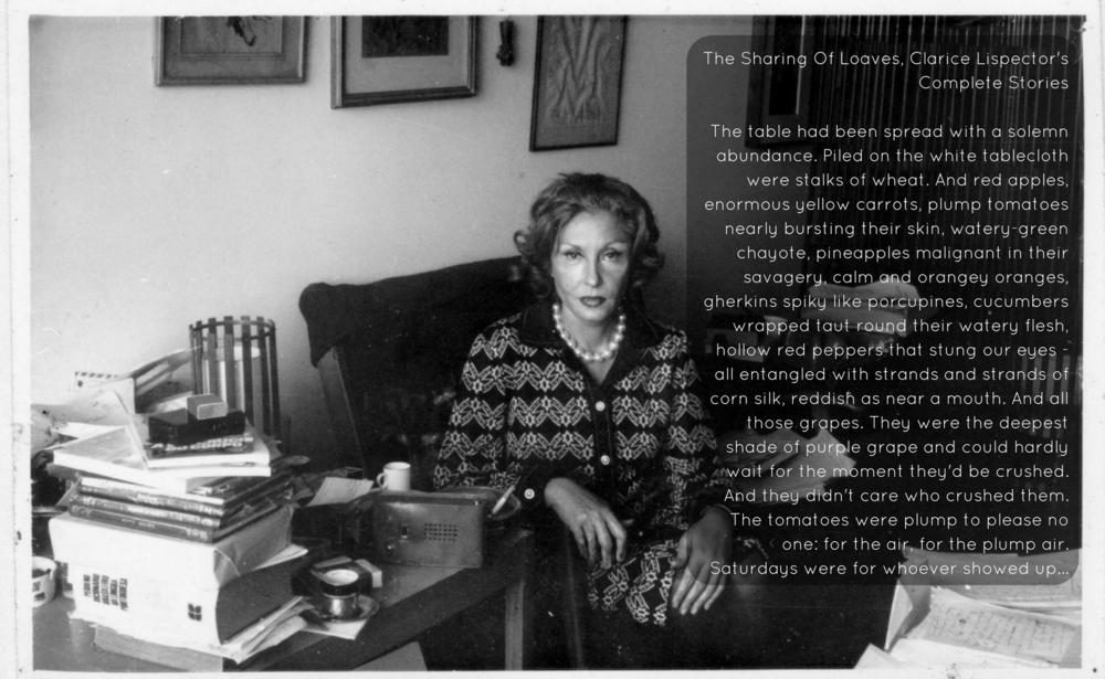 The Sharing Of Loaves, Clarice Lispector's Complete Stories. The table had been spread with a solemn abundance. Piled on the white tablecloth were stalks of wheat. And red apples, enormous yellow carrots, plump tomat.png