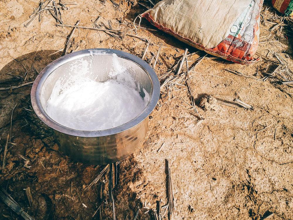 Camel milk is popular in Kutch