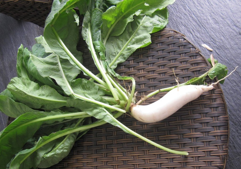 Recipe for radish greens | Root to fruit | Zero waste cooking