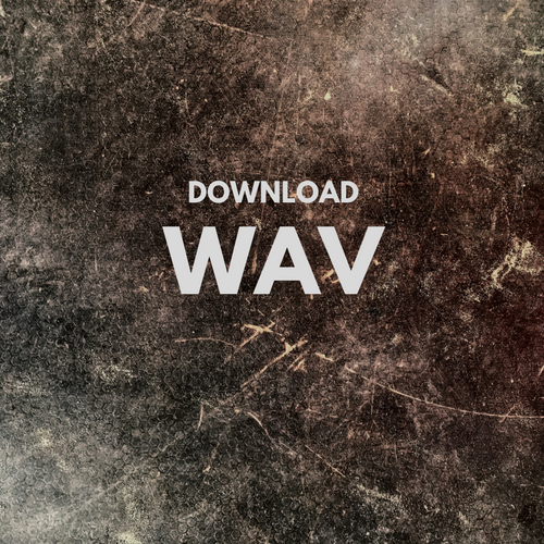 download wav everybody.png