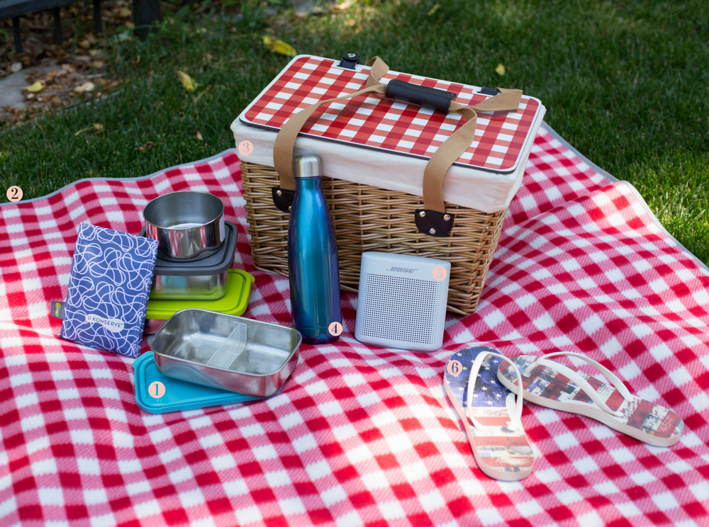Get Picnic Ready-LIFE SMART by Carrie Dorr