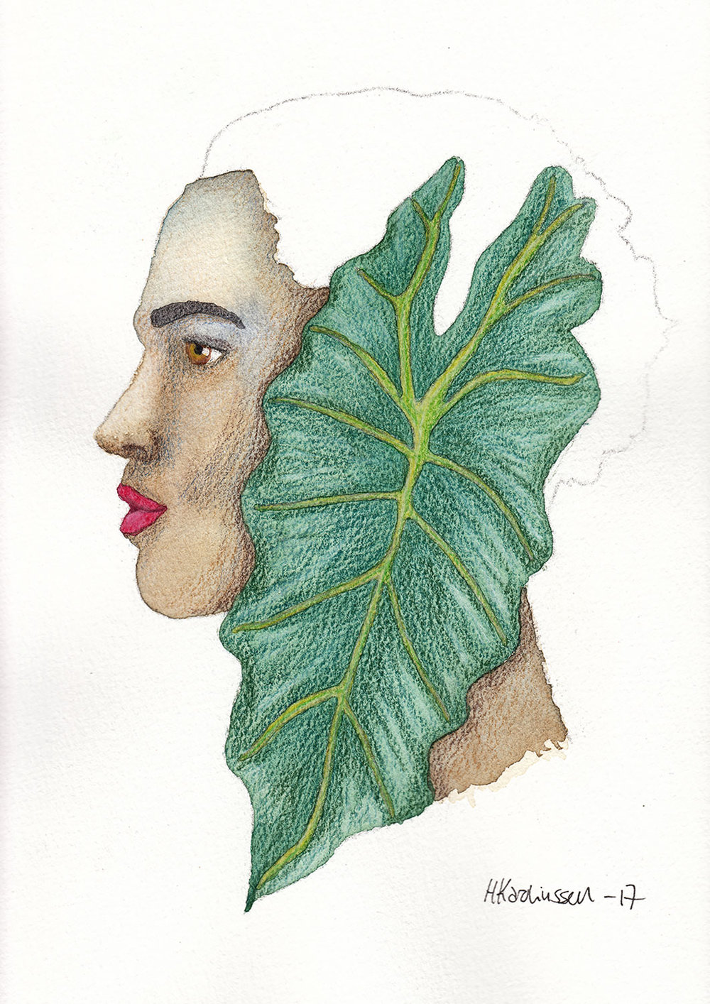 PlantPortrait_AlocasiaAmazonica.jpg