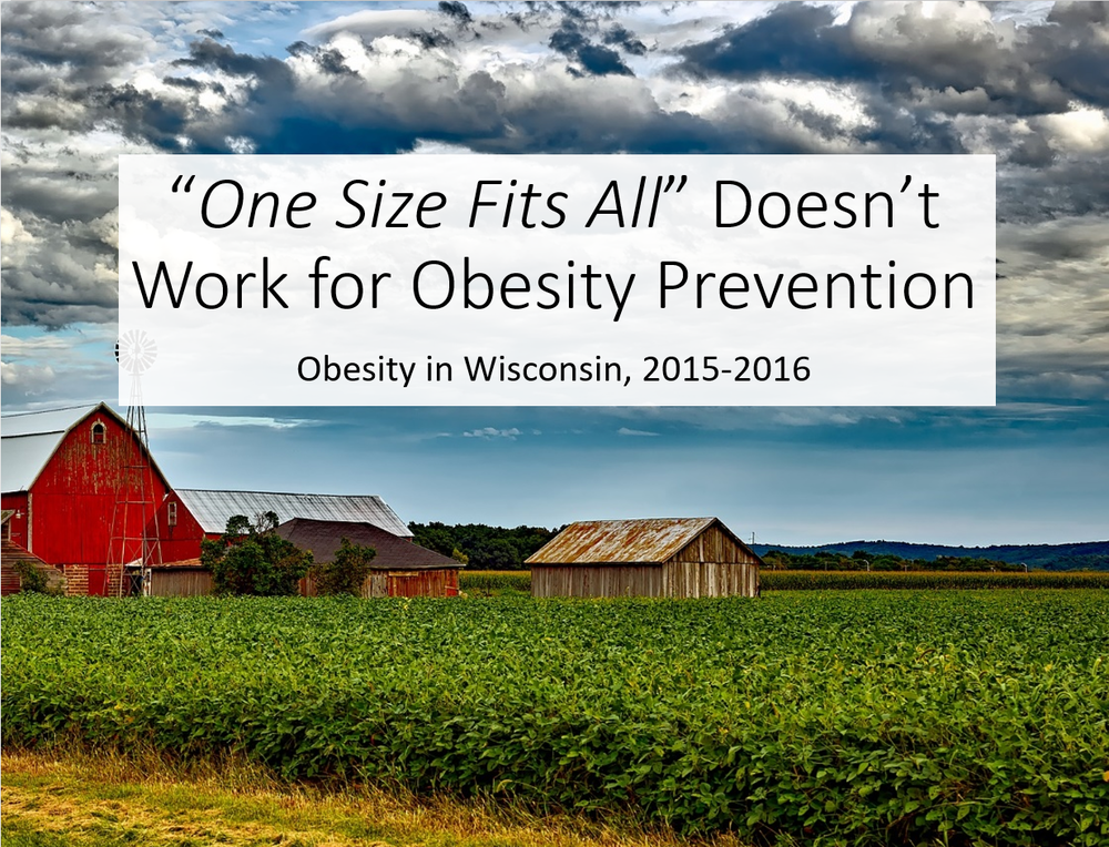 """One Size Fits All"" Doesn't Work for Obesity Prevention, Obesity in Wisconsin 2015-2016. Statewide Report Cover"