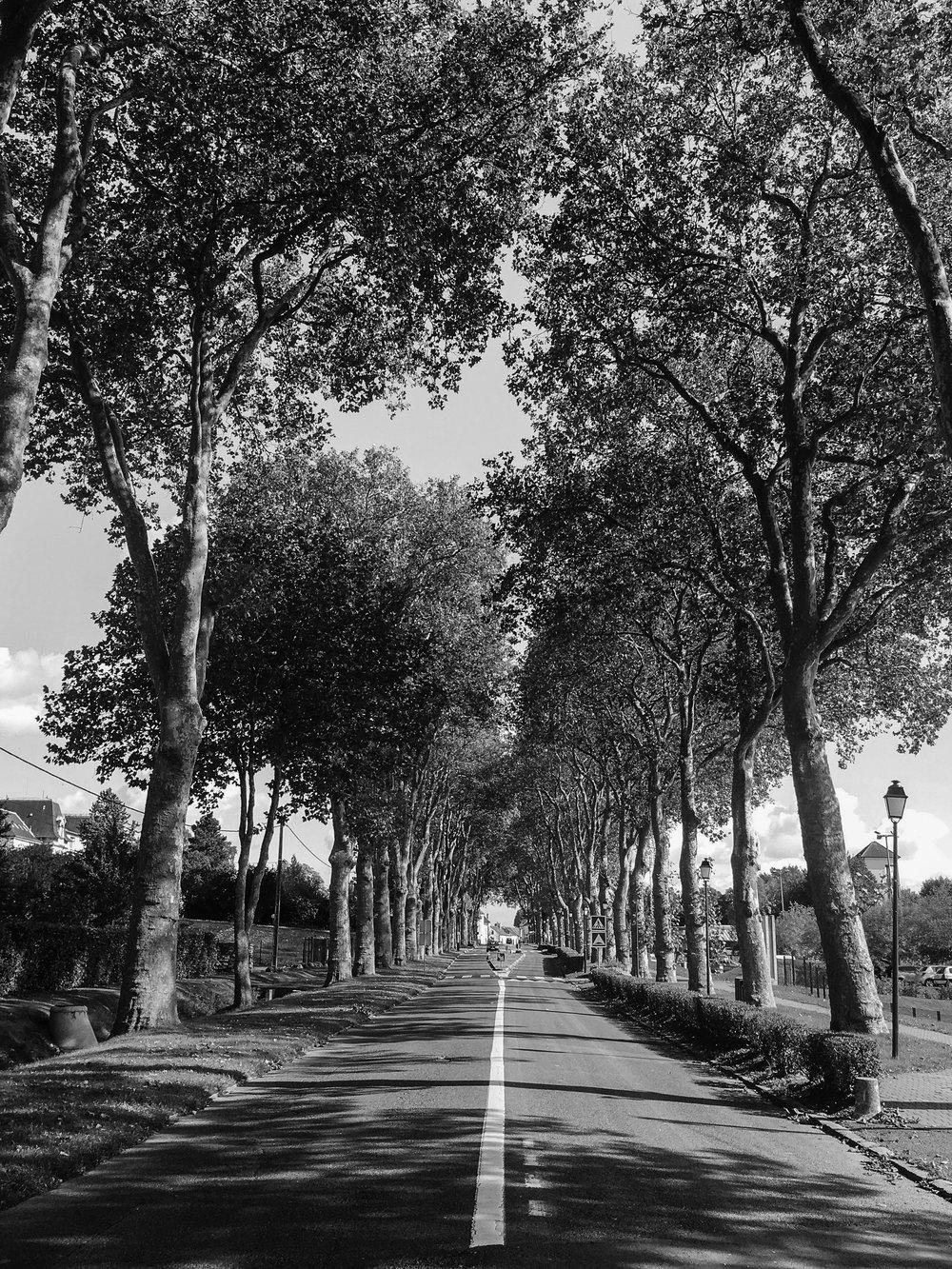 Tom_Oliver_Payne_London_to_Paris_Cycle-15.jpg