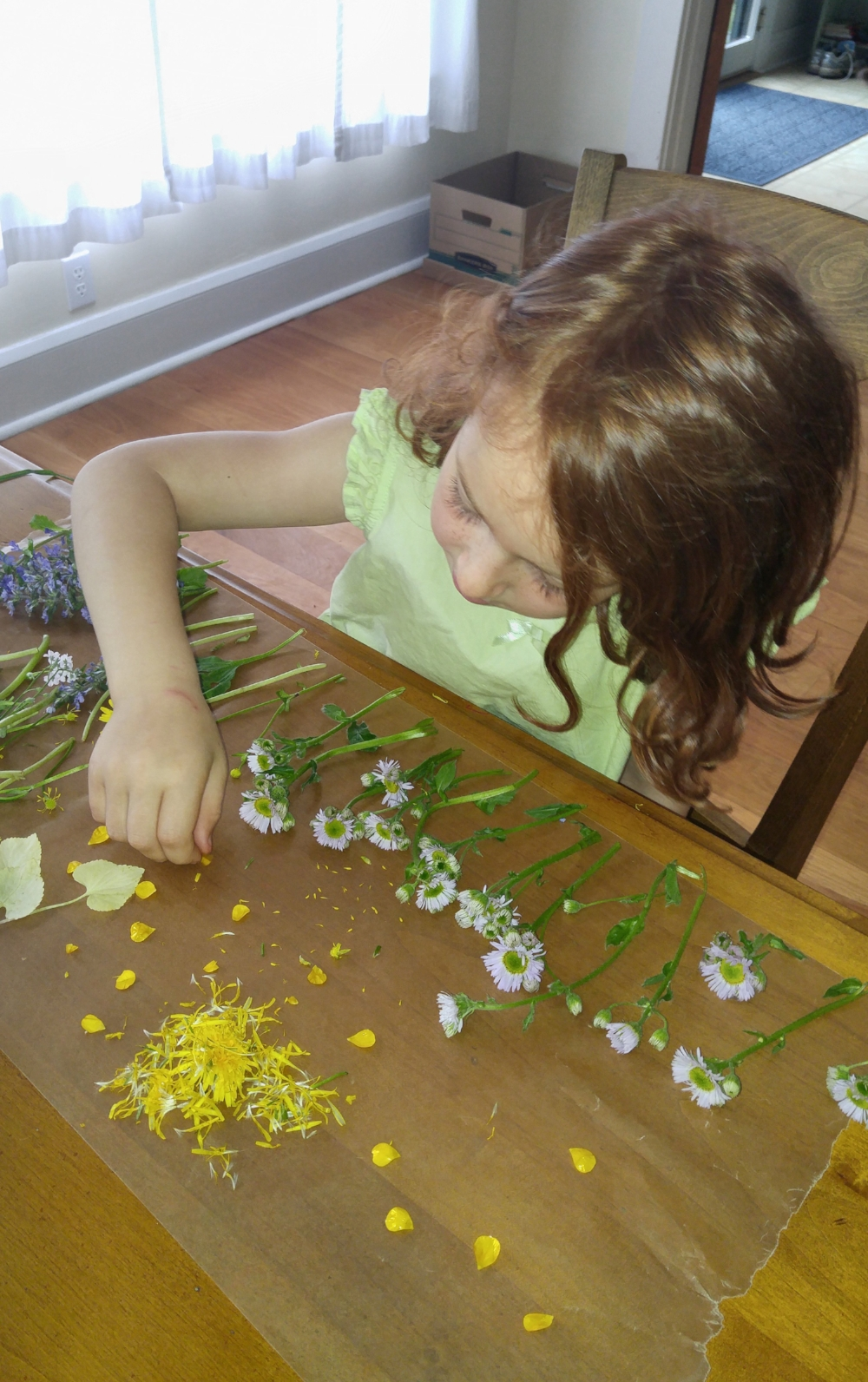 Natural materials are an essential part of our kits. They allow for heightened sensory learning!