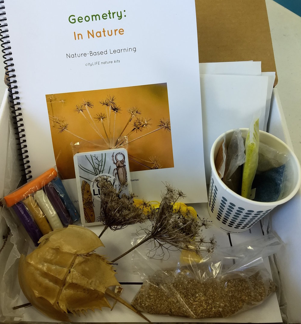 Geometry in Nature includes: ~informational lesson and activities ~playing cards ~clay ~colored sand ~symmetry activities ~natural materials collected in Maine