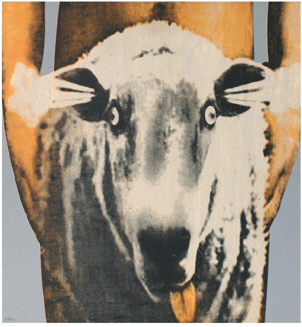 BBQ, 2006, printed plastic, 50x50cm