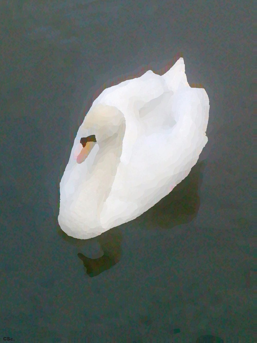Swan, 2016, digital image