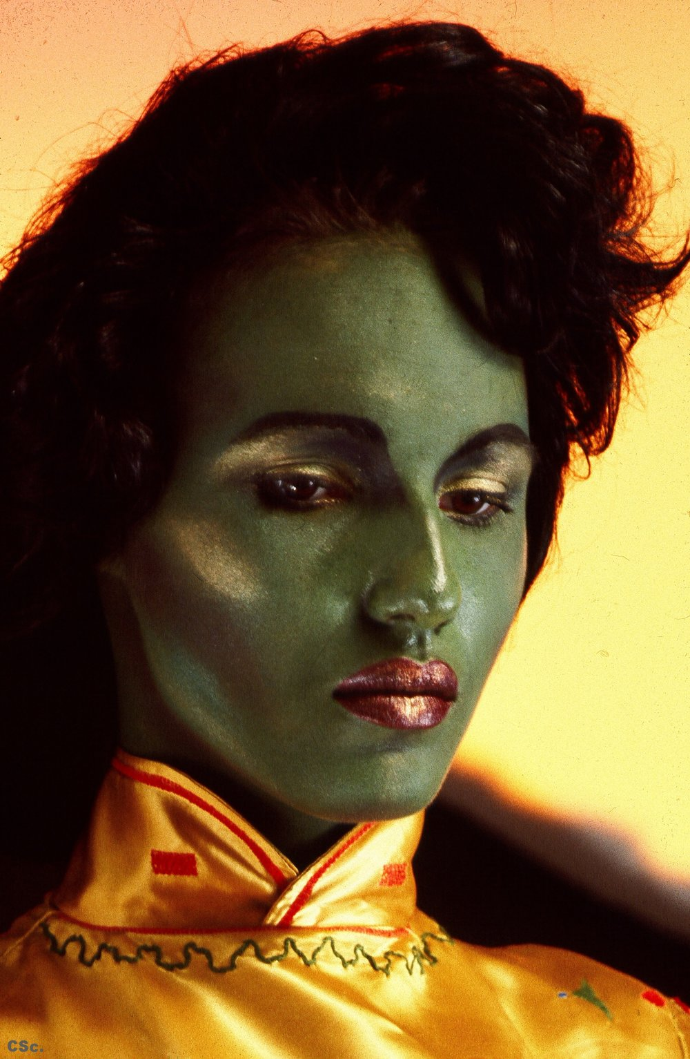 Green Amanda, 1984, photograph by Joe Lyons