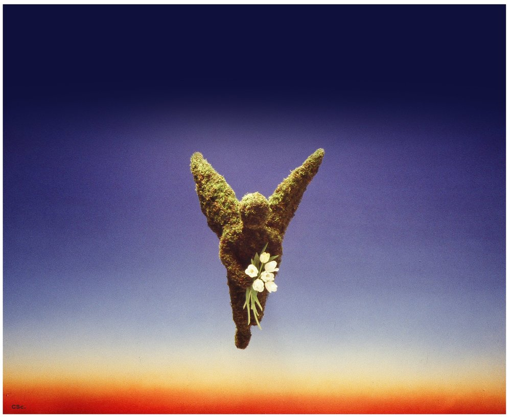 Three Dimensional Moss Angel, moss on chicken wire with fresh tulips, photograph by Joe Lyons, 1990, 85x80cm