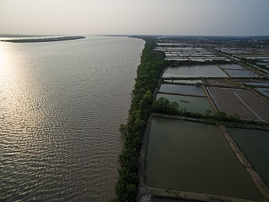 Example of a coastal shrimp farm on the island of Phu Thanh. Image Credit: Luc Forsyth and Gareth Bright, via drone.