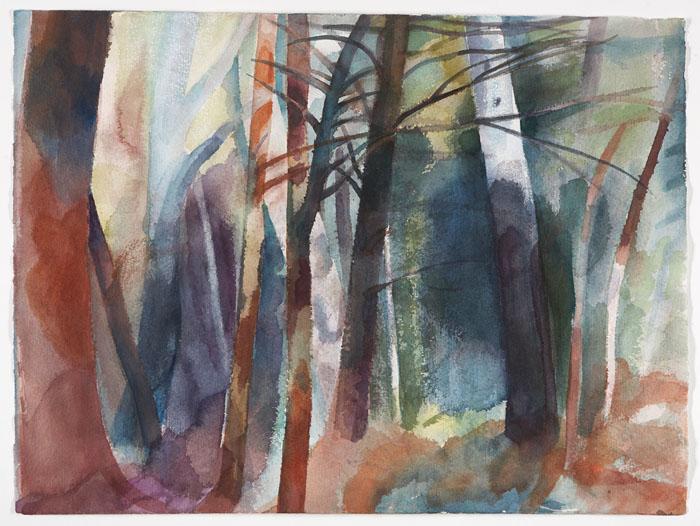 Summer Woods (7)