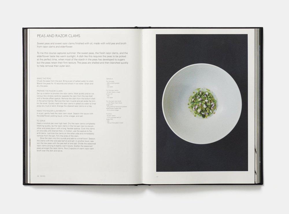 Aska Book.jpg