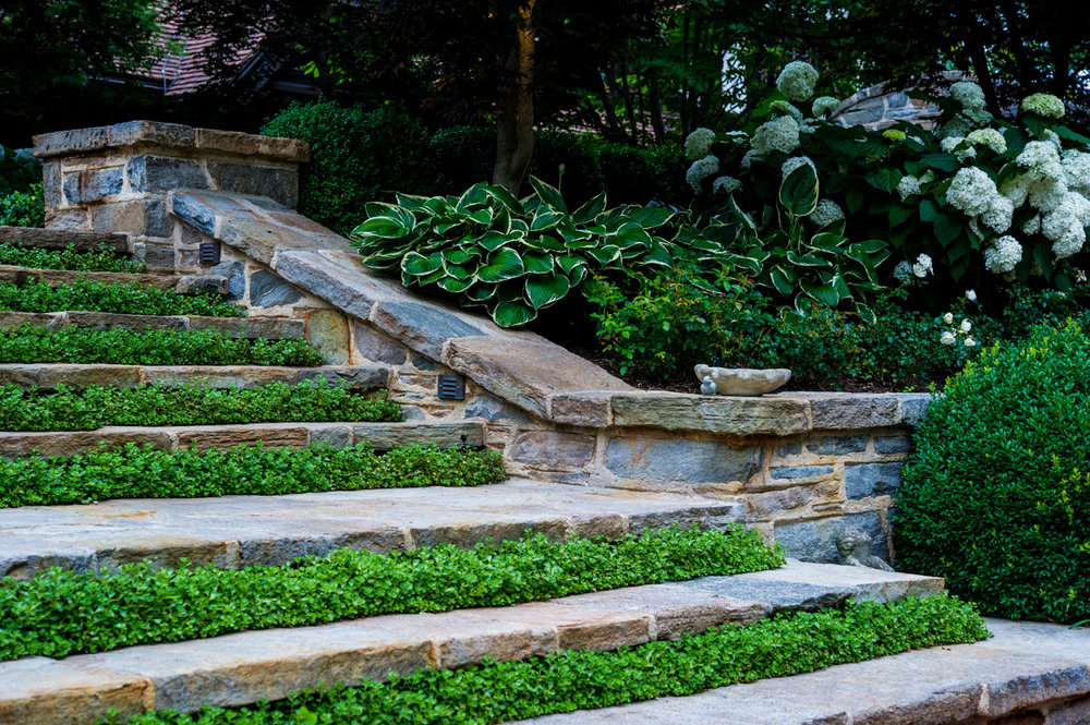 Paragon-Landscaping-Corp-4.jpg