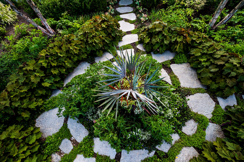 Paragon-Landscaping-Corp-6.jpg
