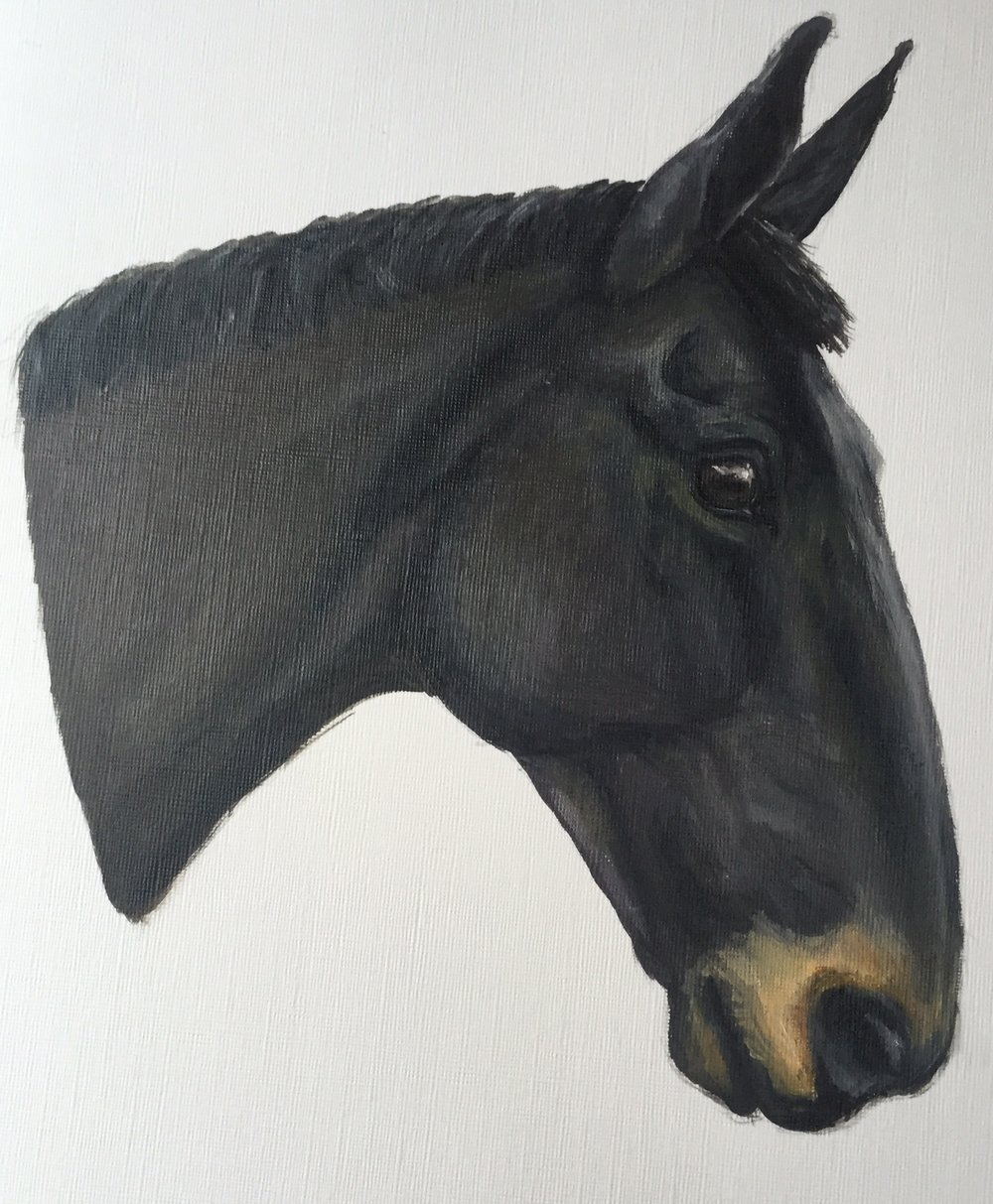'Pajo' Oils on canvas
