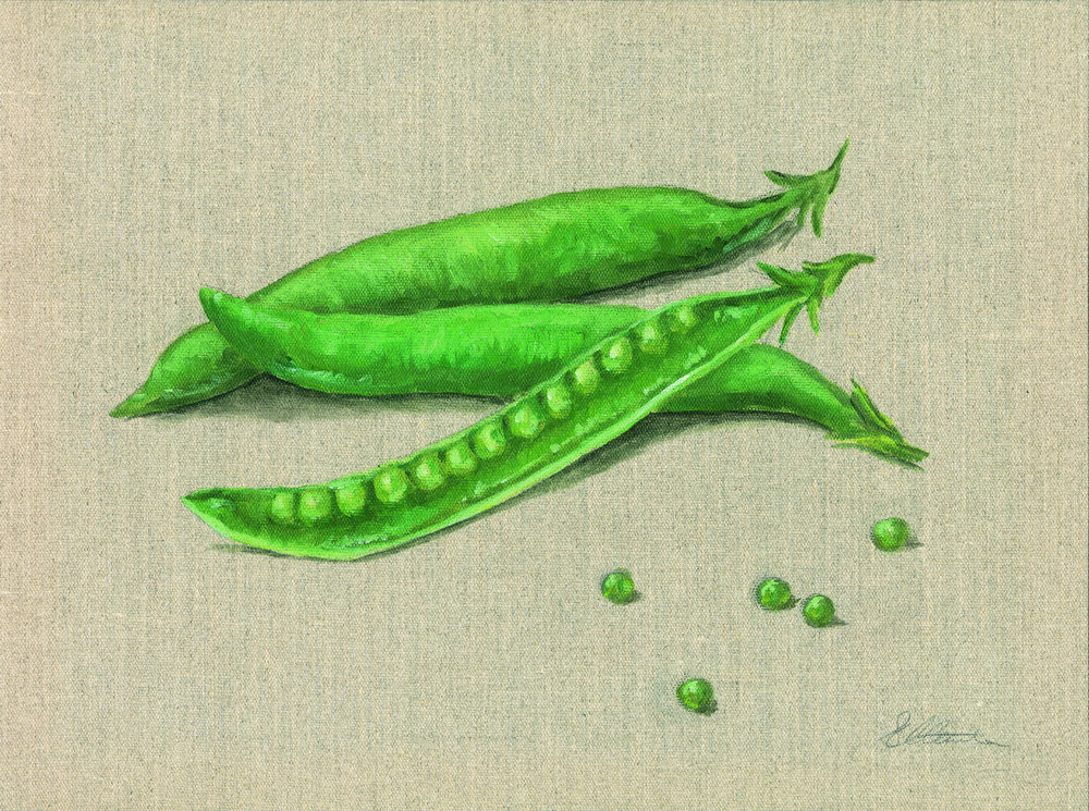 Peas. Oil on hessian canvas. Prints available