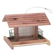 Buffet Bird Feeders