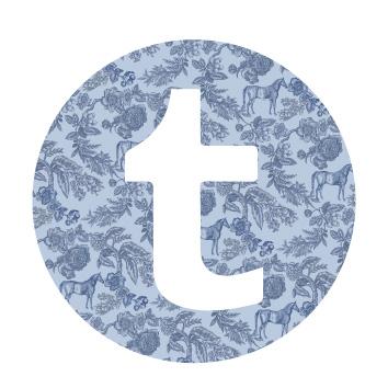 tumblr icon.jpg