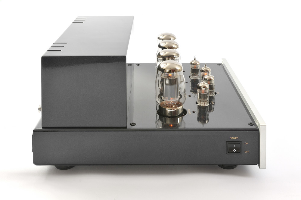 Prologue Premium Mono Amplifier - silver - side with no cover - HR - JPG.jpg