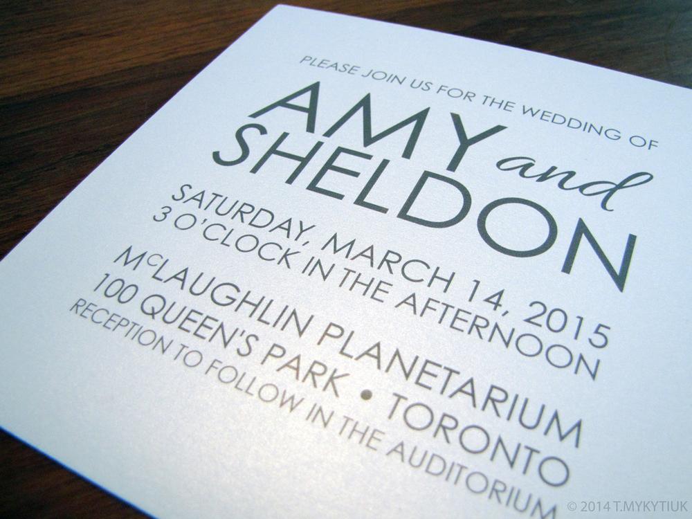 AmySheldon1_web.jpg