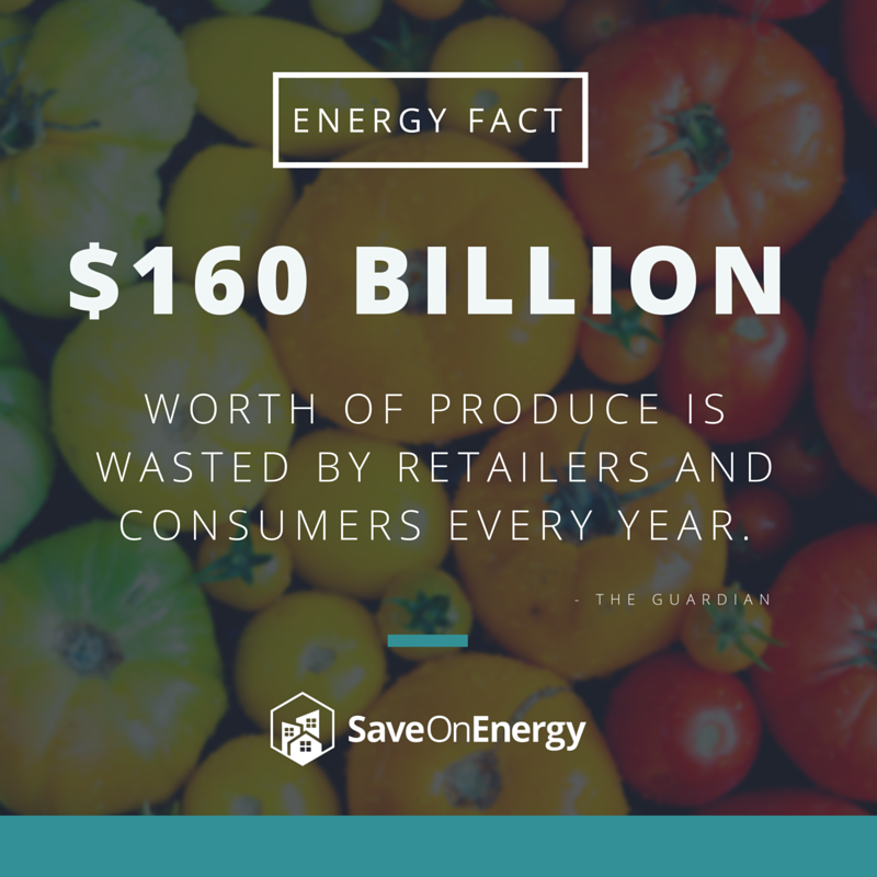 Energy Fact - $160b Produce Wasted%2Fyear.png