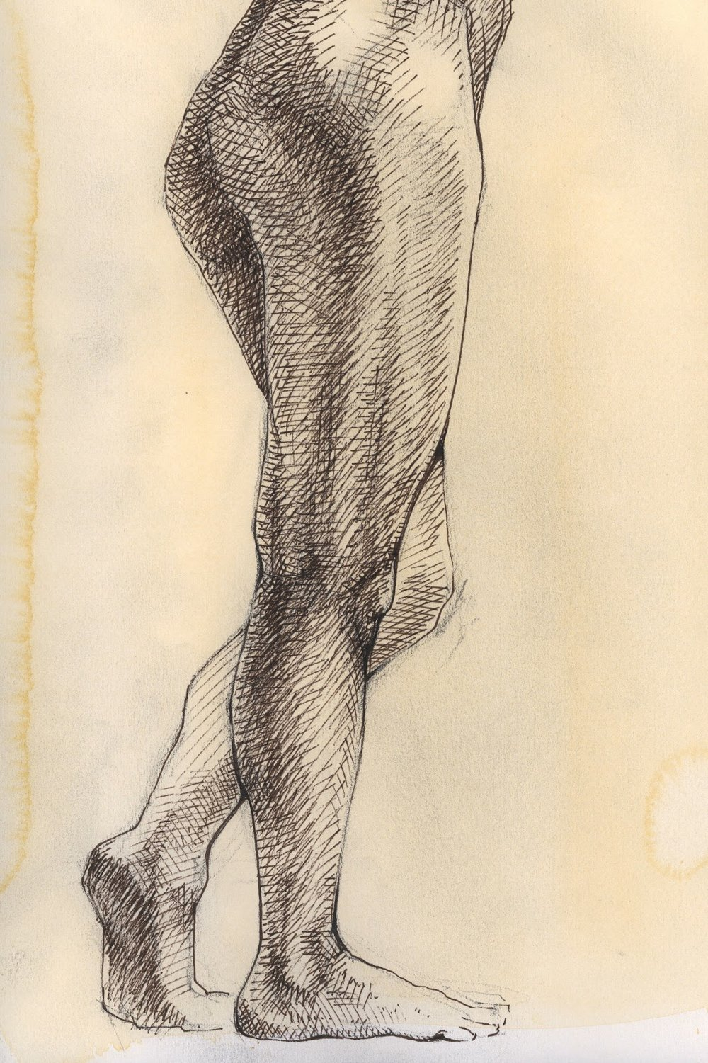 Marie-pen and ink study-legs.jpg