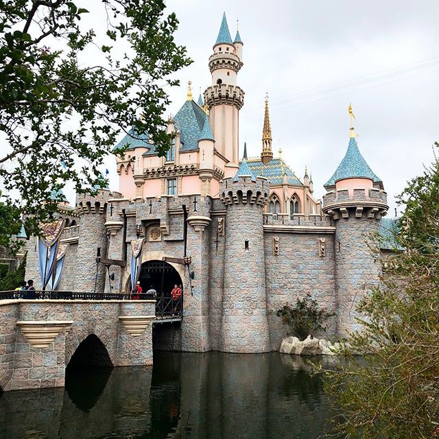 Sleeping Beauty's castle was a lovely sight to see. You can even walk throughout the castle inside to walk through the story of Sleeping Beauty! Definitely missing this place already! . . . . . #disney #disneygram #disneyside #parkbound #disneyparks #disneyland #waltdisneyworld #disneyprincess #instadisney #pixarfest #disneymagic #mickeymouse #minniemouse #universalhollywood #disneybound #featuremydisney #ilovedisney #dressedindisney #disneylifestylers #magicalmakers #mainstreetusa #parkbound #disneyblogger #cozyconemotel #californiaadventure #disneyig #disneyphoto #waltdisney #disneypics #disneyland