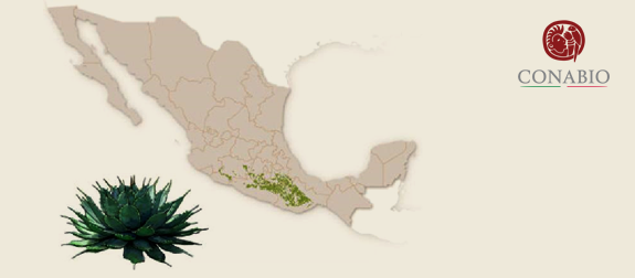 *Map provided by CONABIO website