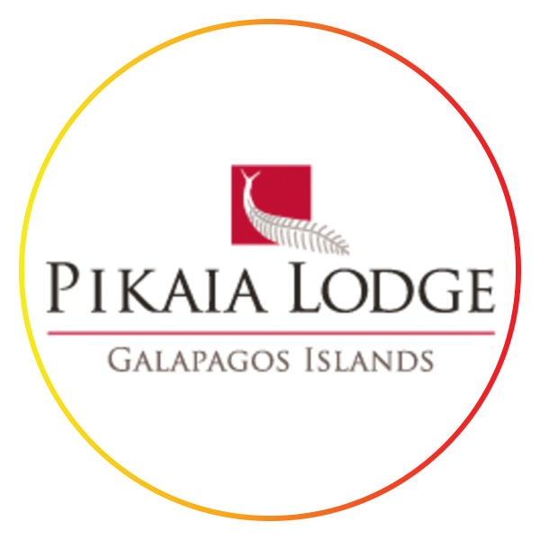 The-Loupe-Blog-Post-Photos-Pikaia-Lodge-600x600.png