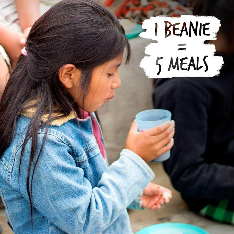 Cause-Beanies7_1074429a-37f3-4d15-8805-f961f0ffd949_800x.jpg