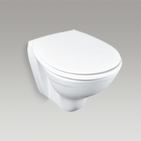 BRIVE PLUS Wall Hung Toilet K-13945IN-S
